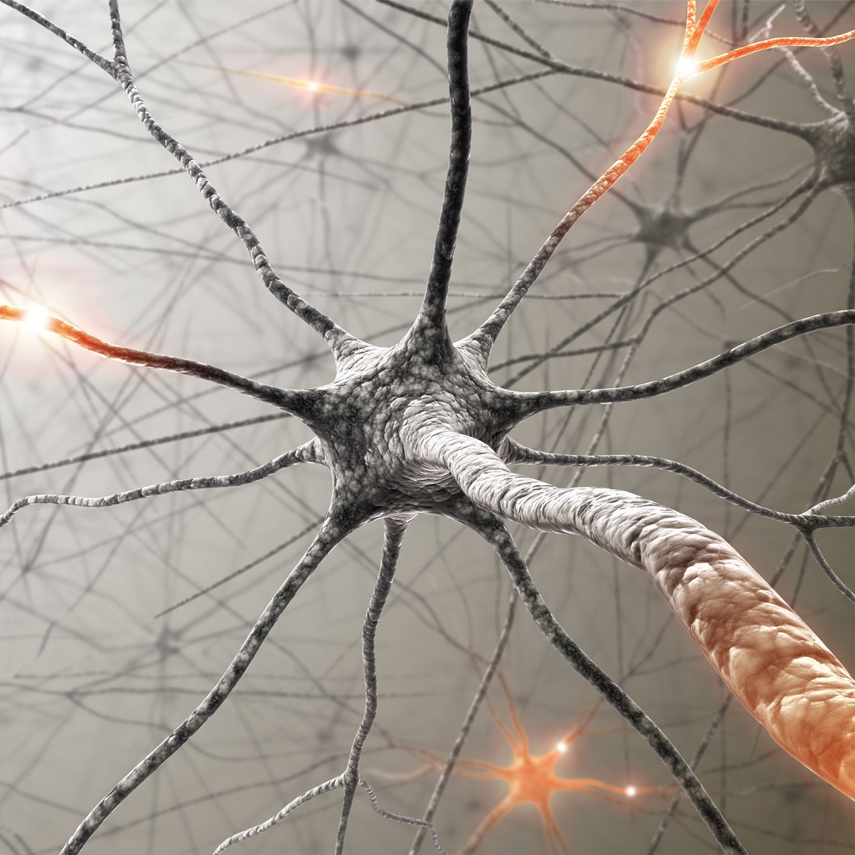 Neurocheck